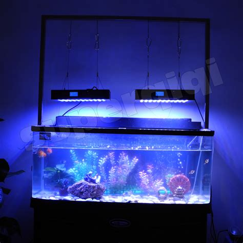 Led Lights For Fish Tank by 2015 New Revolutionary 1x165w Cree Led Programmable