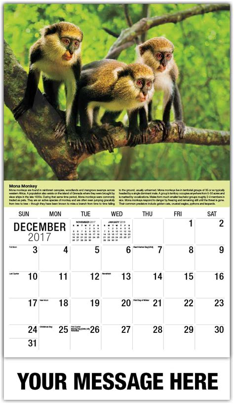 monkeys calendar 2018 books international wildlife calendar business advertising low