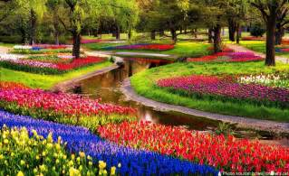 Pics Of Flower Gardens Interesting Facts About Keukenhof Gardens Just Facts