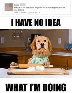 I Have No Idea What Im Doing Meme - meme watch i have no idea what i m doing sums up the