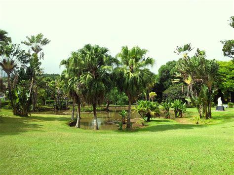 Mauritius Botanical Garden Gardens In Mauritius