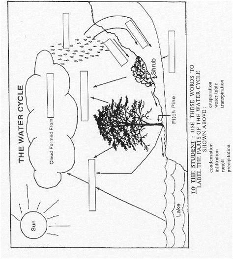 water cycle diagram worksheet 12 best images of water cycle blank worksheet water