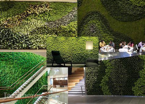 imagenes muros verdes im 225 genes de plantas jardines y muros verdes jardineros mx