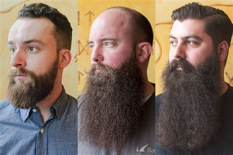 beard length vs hair length image gallery terminal beard