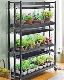Starting Indoor Vegetable Garden - aerostitcher s garden my diy light stand