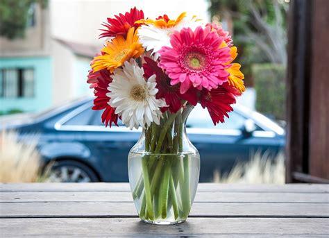 free photo flower vase vase flowers free image on
