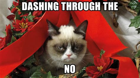 Merry Christmas Cat Meme - grumpy cat meme pictures humor funny cats christmas