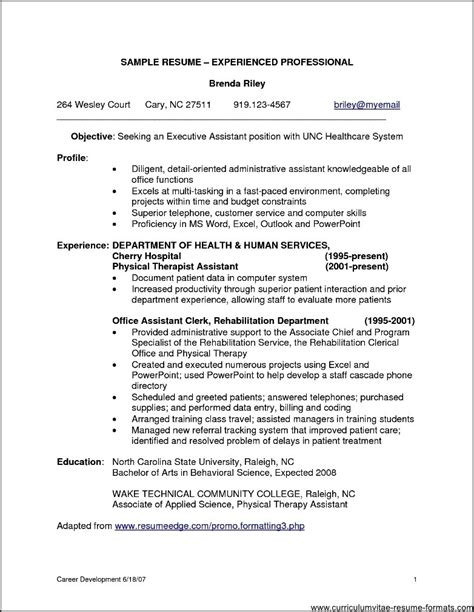 resume sles for experienced software professionals resume template exles header basic intended for