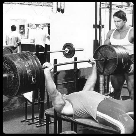 lou ferrigno max bench press quotes by vince gironda like success