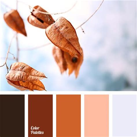 colors that match with brown pinterest the world s catalog of ideas