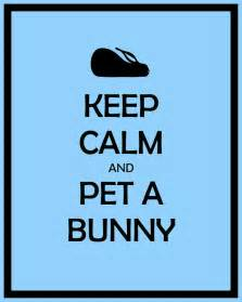 items similar to black 8x10 keep calm and pet a bunny