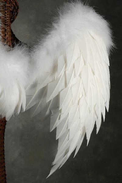 white angel wings lg     victorias secret