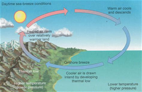 diagram of sea and land sea rezepte suchen