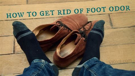 how to get rid of bad odor in house how to get rid of bad odor in house how to get rid of