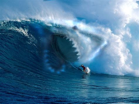 Surf The by Big Wave Surfing Wallpapers 1152x864 278887