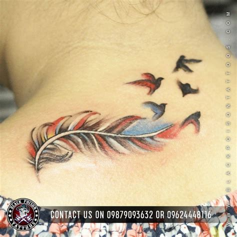 colorful feather tattoos best 25 color feather tattoos ideas only on