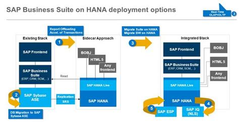 sap hana tutorial pdf tips for a successful sap business suite on hana migration