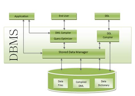 data base management system introducing to database and database management system