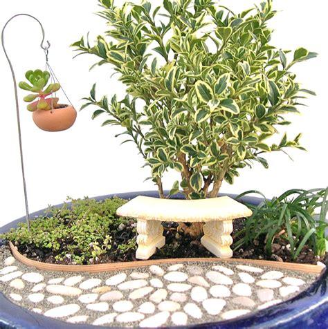 keep gardening this winter with indoor miniature gardens