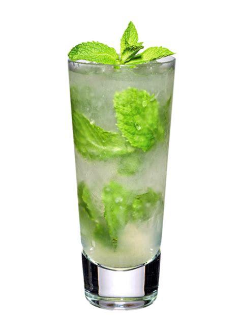 mojito cocktail elderflower mojito cocktail recipe
