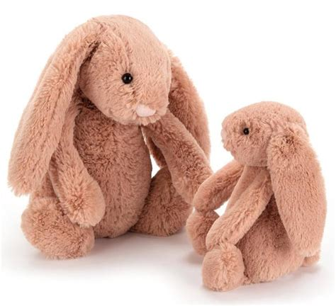 bashful bunny in apricot by jellycat the garden