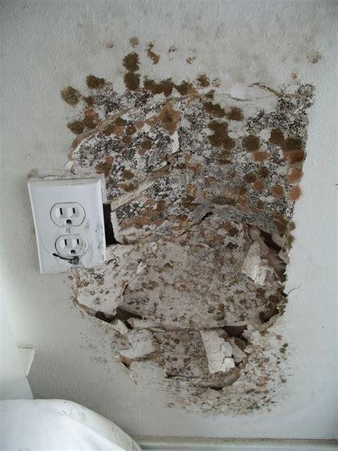 house mold house mold sle jpg