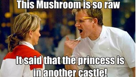 Gordon Meme - ode to chef ramsay democratic underground