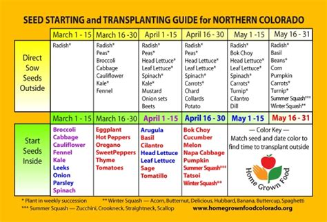 vegetables zone 5 zone 5 northern colorado seed starting planting calendar