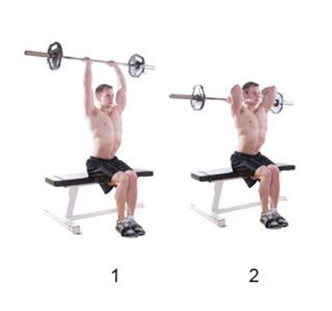 french bench press bench press in french 28 images evolutionfit lying