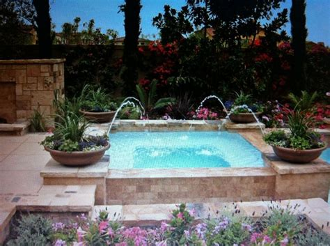 Backyard Plunge Pool by Plunge Pool Design Plunge Pool New House