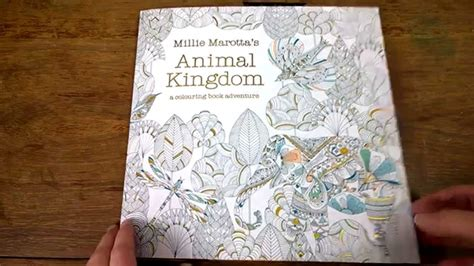 why do i millie books colouring book animal kingdom colouring tips and walk