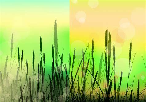 bokeh reed background vector pack   vectors