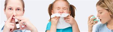Allergy And Asthma Allergy Asthma And Sinus Center Services