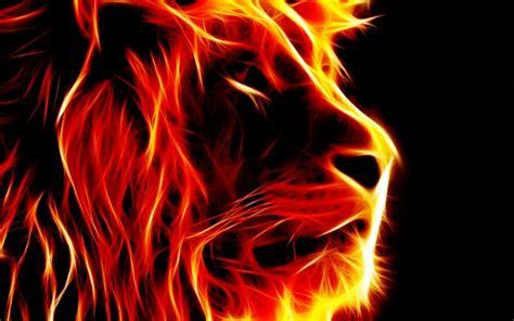 imagenes motivadoras en hd leones fondos de pantalla hd lanaturaleza es