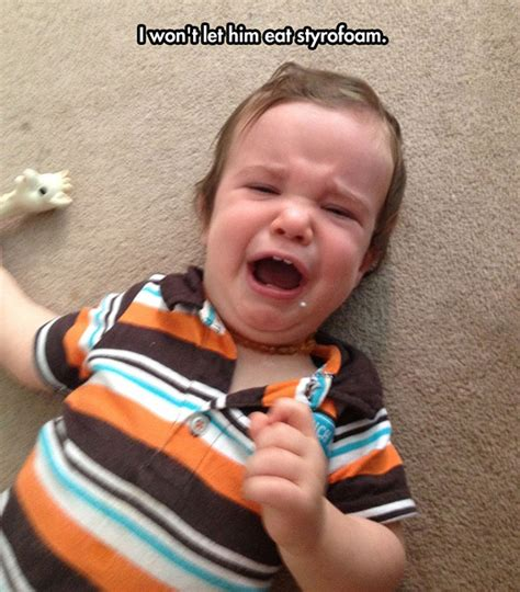 Tantrum Meme - 36 reasons my kid is crying temper tantrums you can t