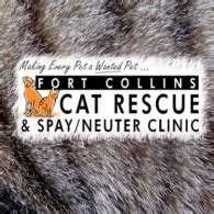 poudre puppy rescue fort collins fort collins cat rescue spay neuter clinic countryside animal hospital s fundraiser