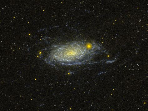 sunflower galaxy sunflower galaxy wikipedia