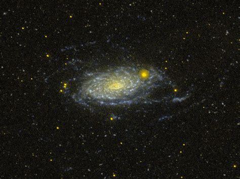 sunflower galaxy sunflower galaxy wikipedia