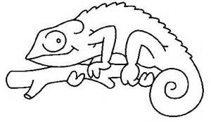 dibujos de reptiles para colorear