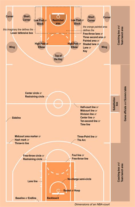 basketball  dummies    ninciclopediaorg