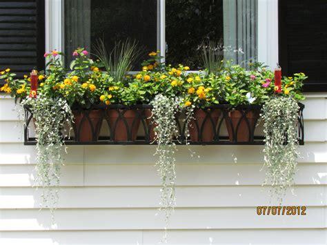 flower window boxes window flower pot rseapt org