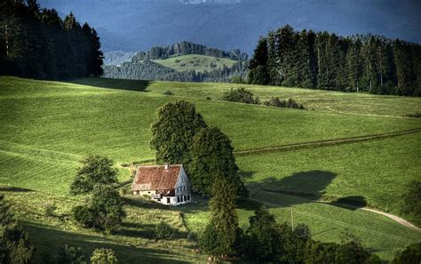 black forest black forest germany