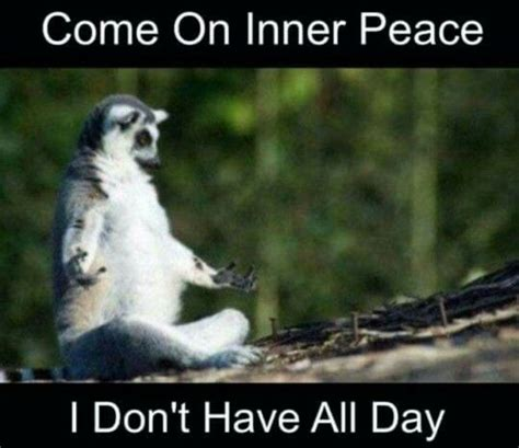 Peace Memes - inner peace meme 28 images kung fu panda 2 quotes 31 i don t have inner peace memes best