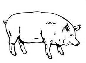 free printable pig coloring pages kids