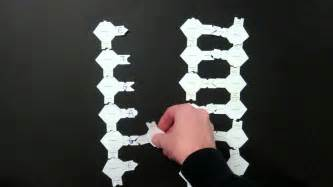 How To Make Dna Model With Paper - dna replication lab using paper models 2