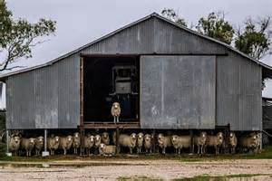 Shering Shed by Image Gallery Shearing Shed