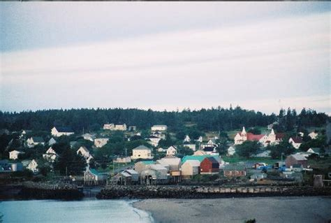 Whale Cove Cottages Grand Manan by Whale Cove Picture Of Grand Manan Island New Brunswick