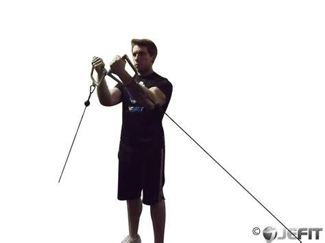 cable lower chest raise exercise database jefit best