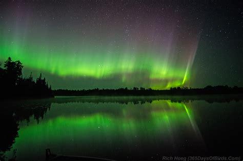 deneve aurora borealis night light a northern night to remember aurora borealis dance 365