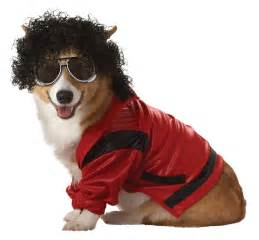 fancy puppy pup a razzi s pop fancy dress costumes are totally inspired metro news
